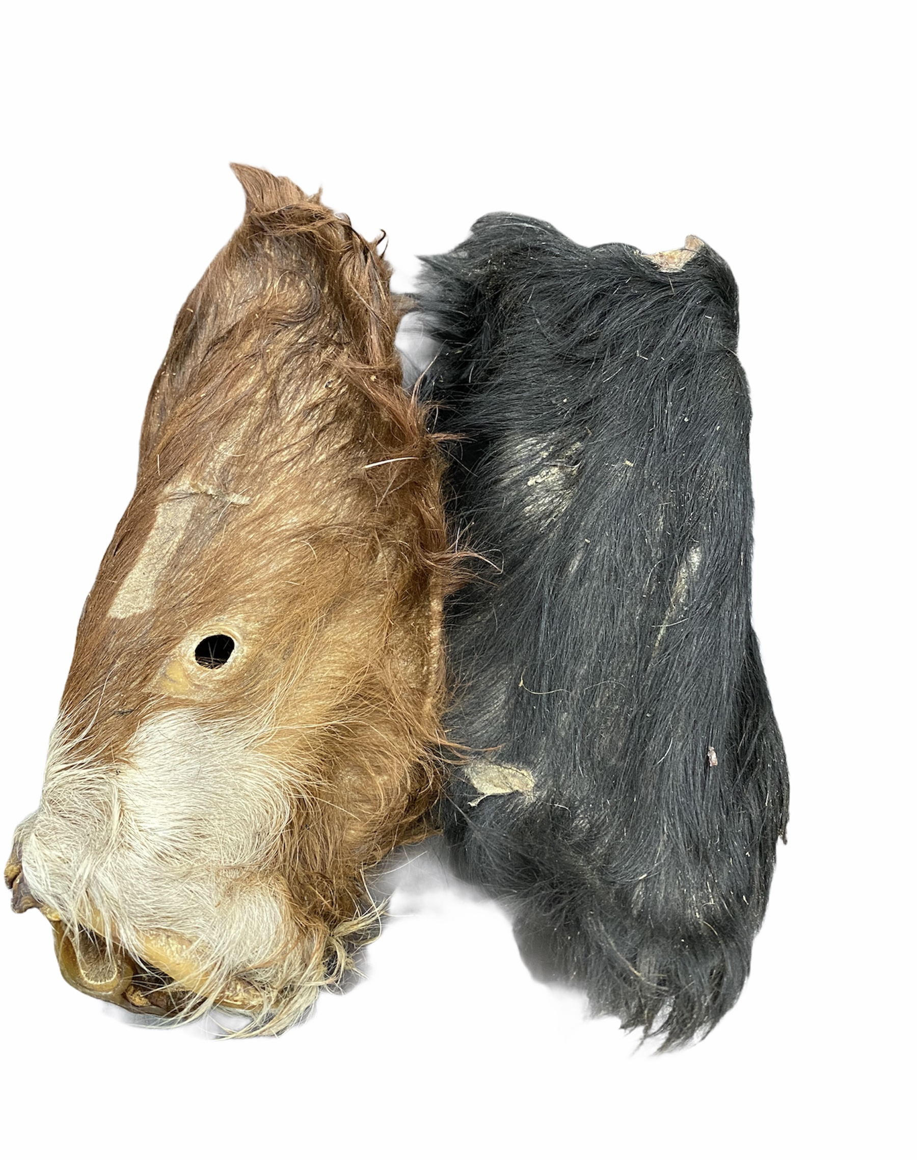 Cows Ears with fur