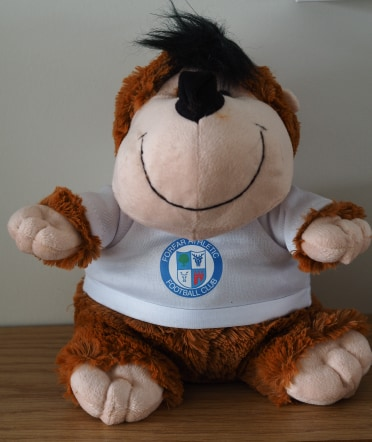 Monkey Cuddly Toy
