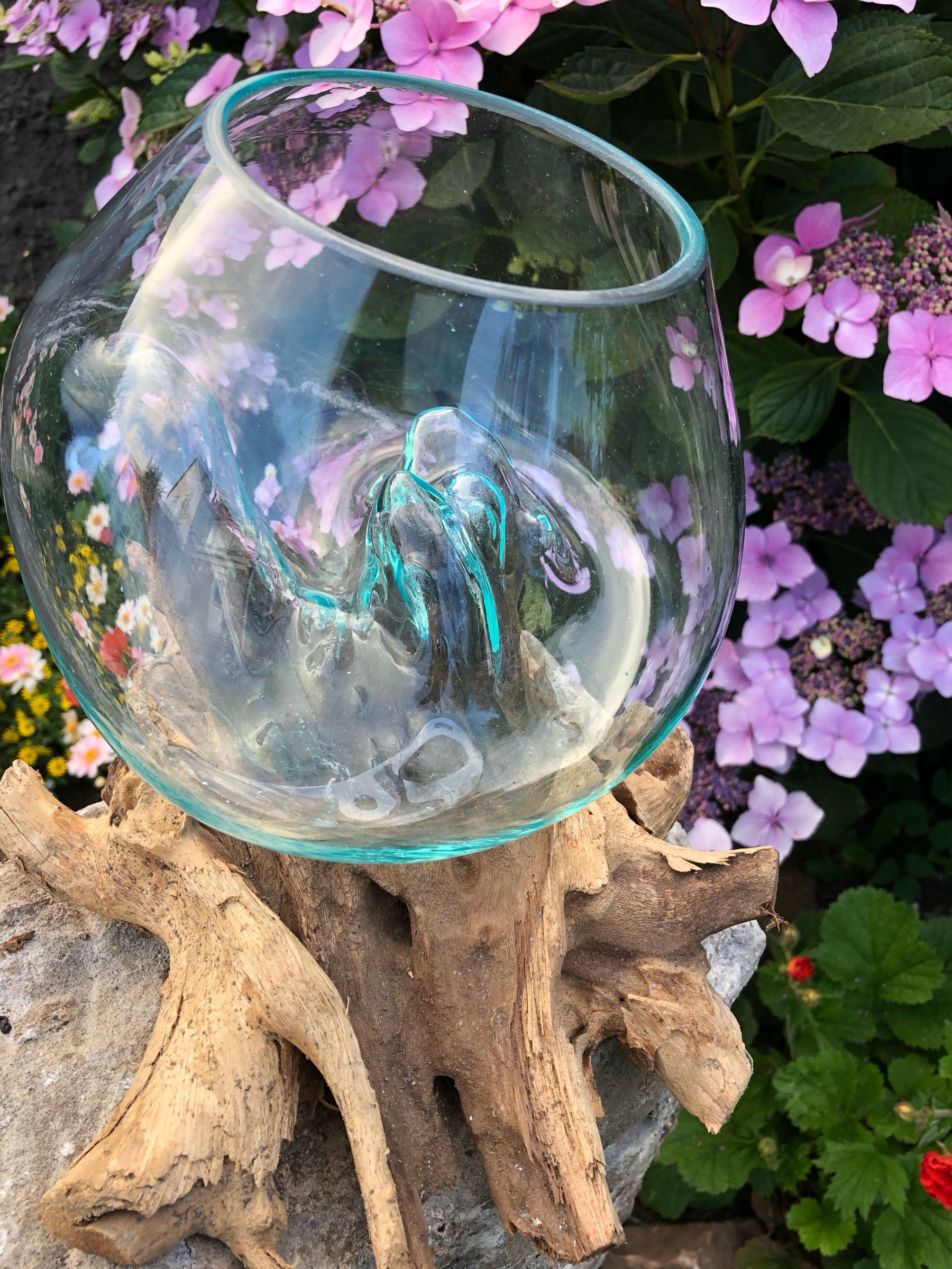 Glass bowl on root