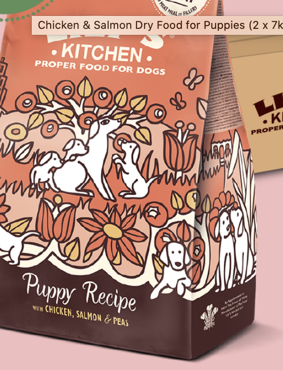 Chicken & Salmon Puppy Recipe Dry Food 1kg Lily's