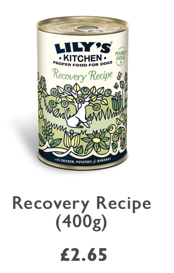 Recovery recipe 400g tin Lily's