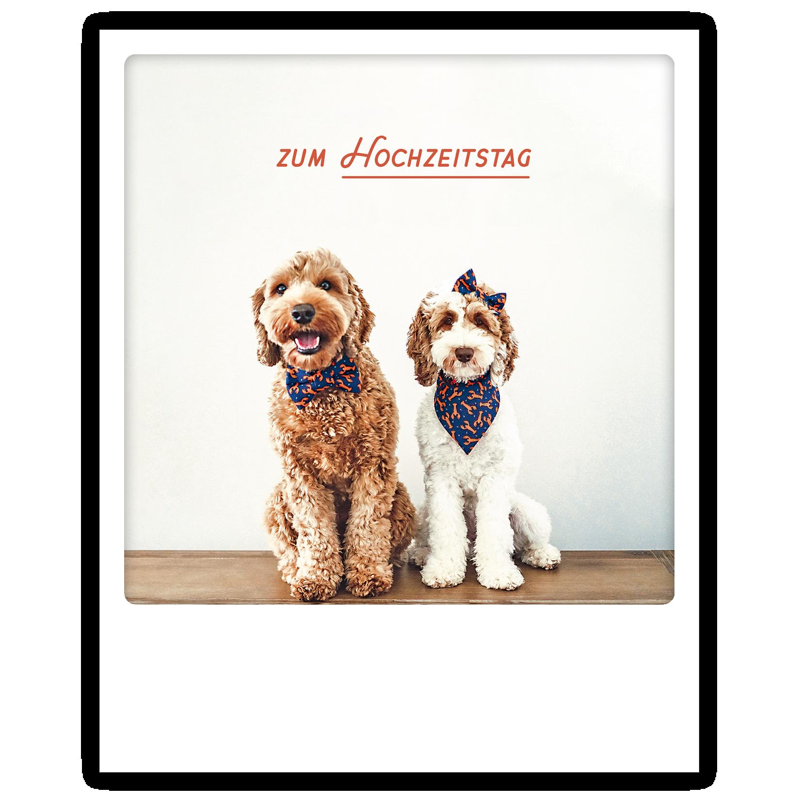 "Photo-Postkarte ""Zum Hochzeitstag"" - ZG 0799 - DE - Pickmotion"