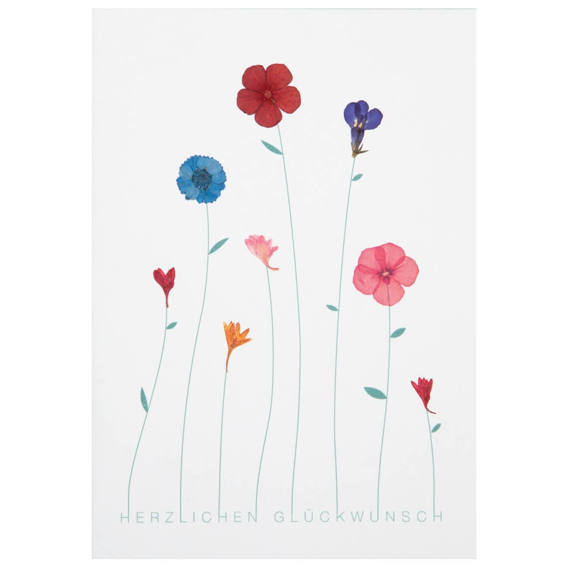 """Geburtstagskarte -  """"Herzlichen Glückwunsch"""" - räder"""