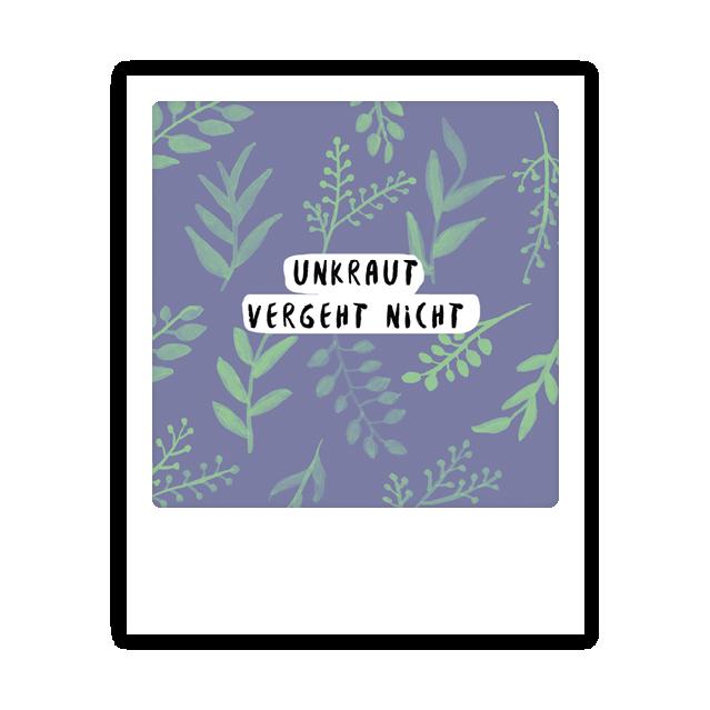 """Kleine-Postkarte """"Unkraut vergeht  nicht"""" - MP 0143 - DE - Pickmotion"""
