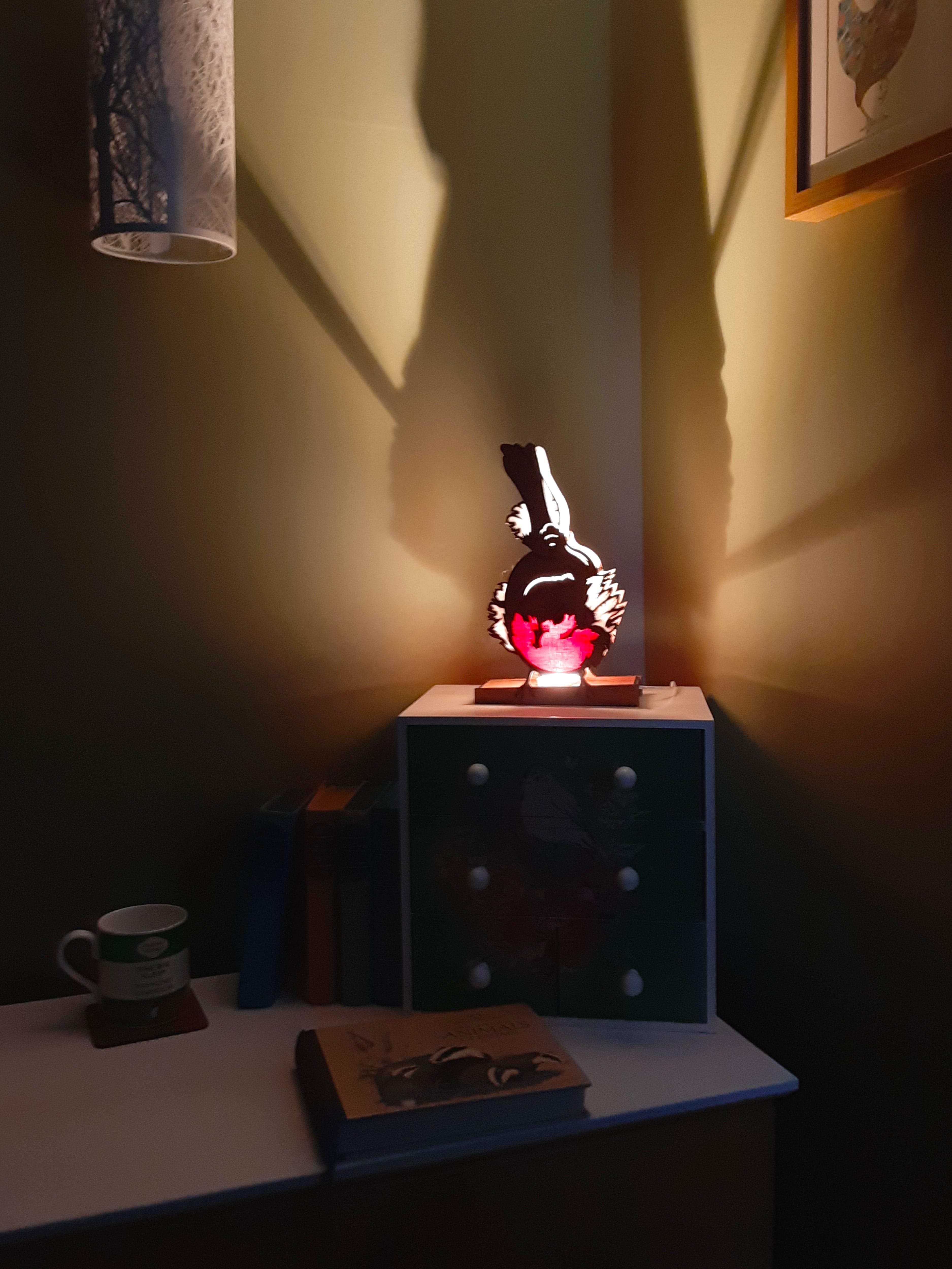 Hangry Mr Robin, Lamp