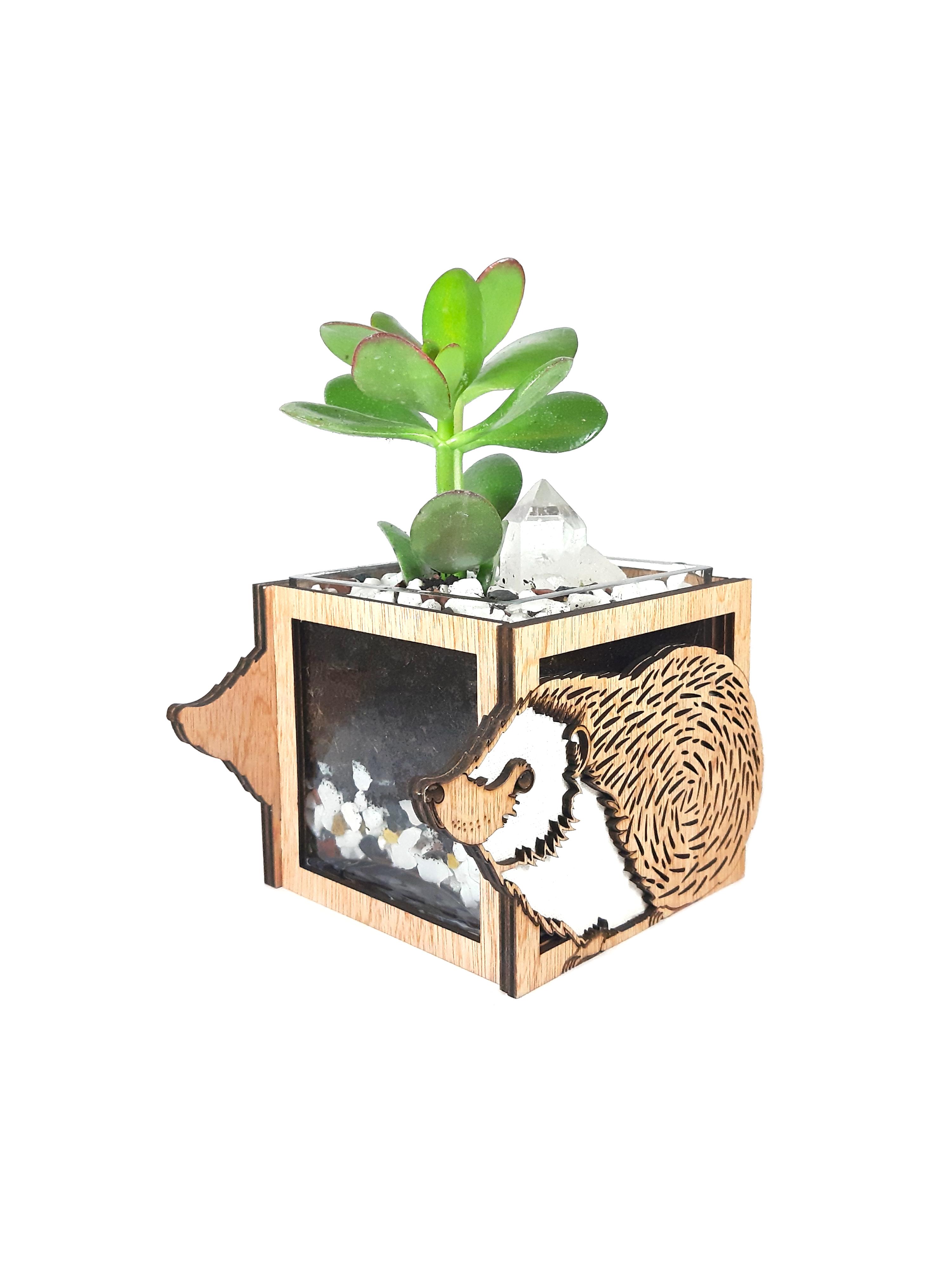 Hedgehog Vase