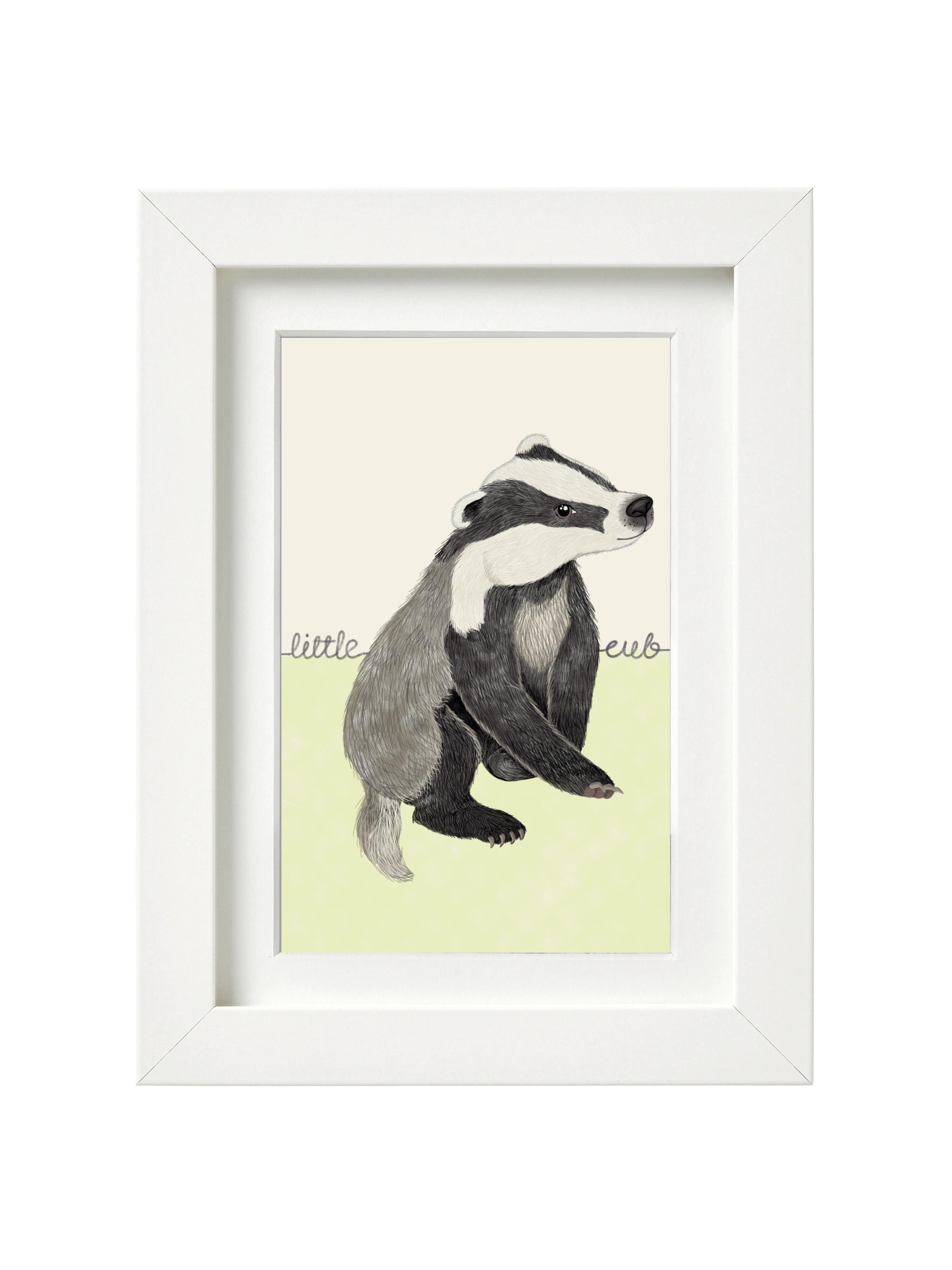 Little Badger Cub
