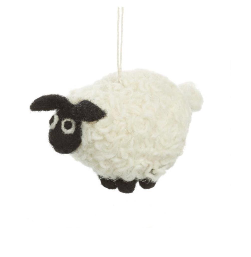 Curly Sheep