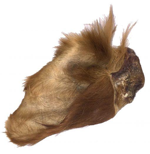 Cow Ears - Hairy