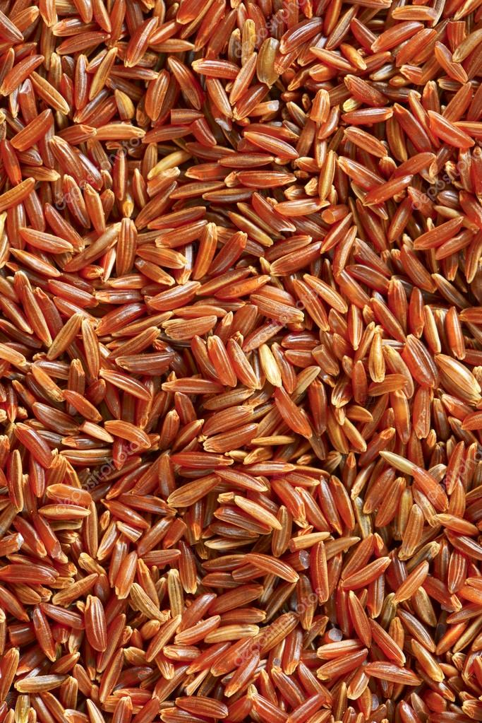 Camargue Red Rice (organic)