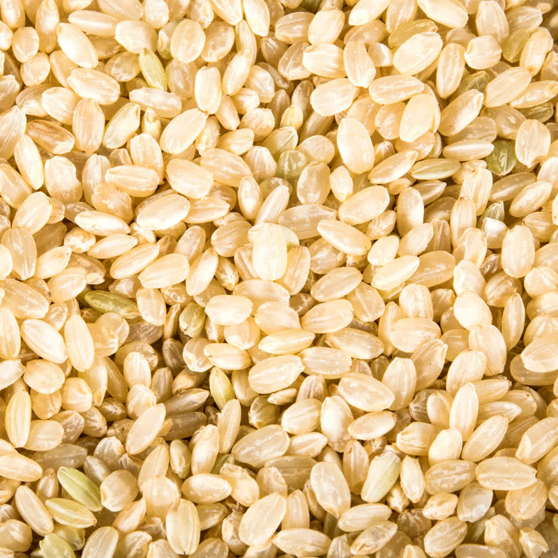 Brown Short Grain Rice (Organic)