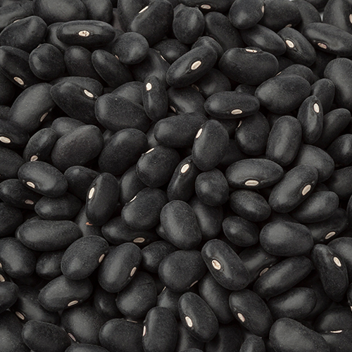 Black Turtle Beans (organic)