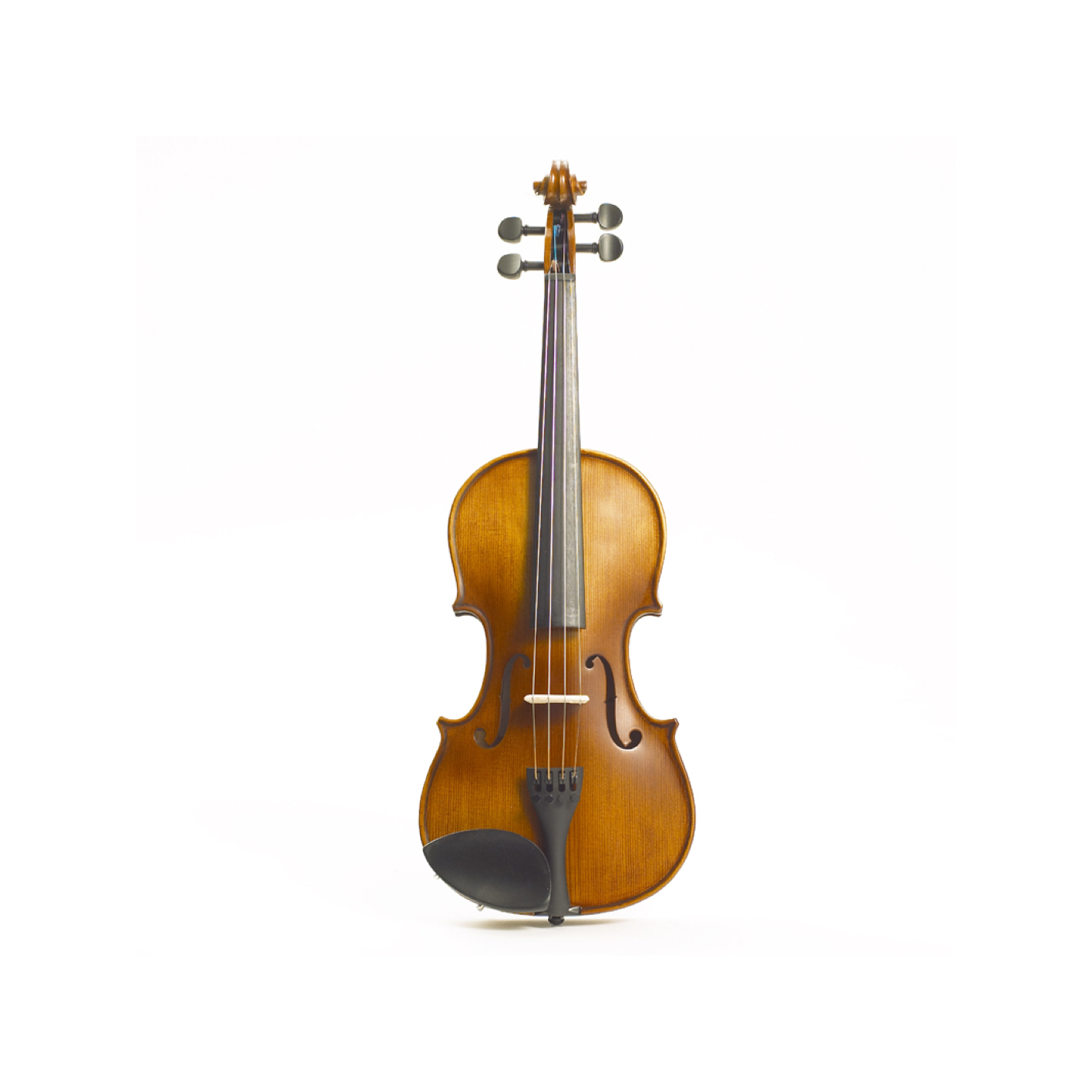 Stentor Graduate Violin Outfit