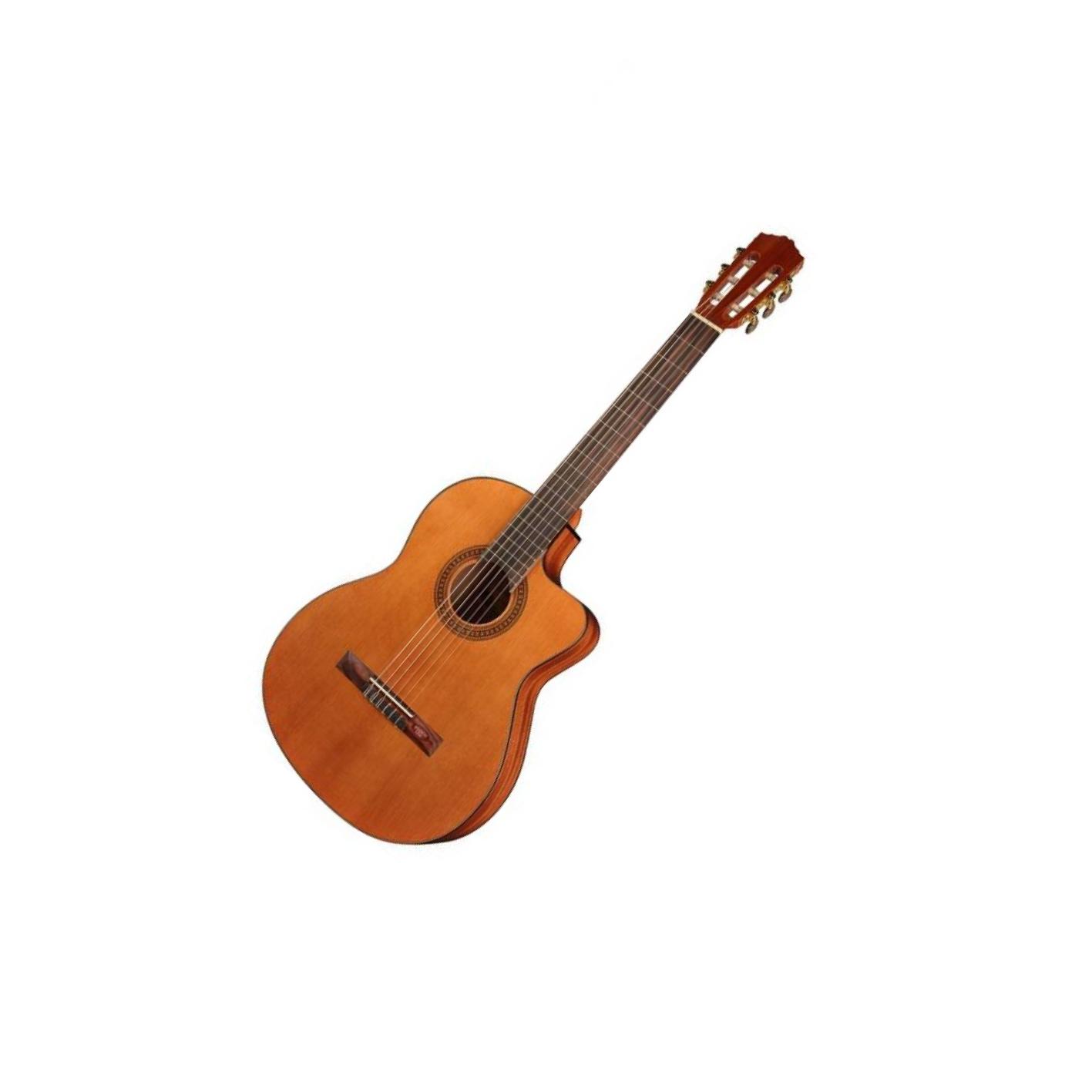 Salvador Cortez CC-10E Electro Classical Guitar