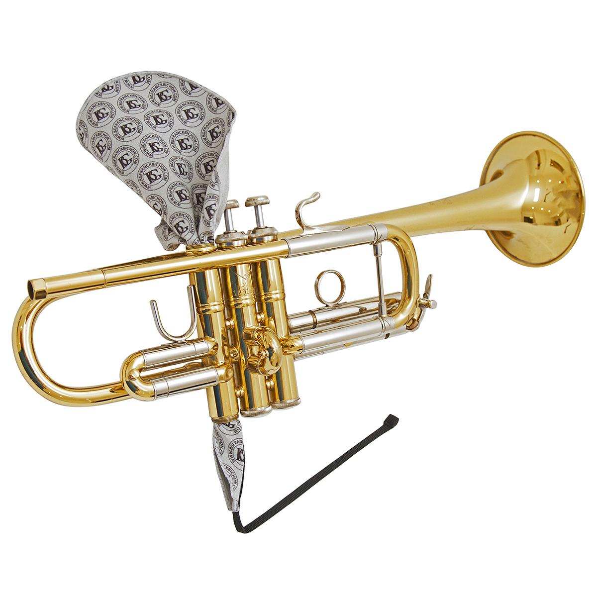 BG A31 T1 Trumpet Valve Casing Swab