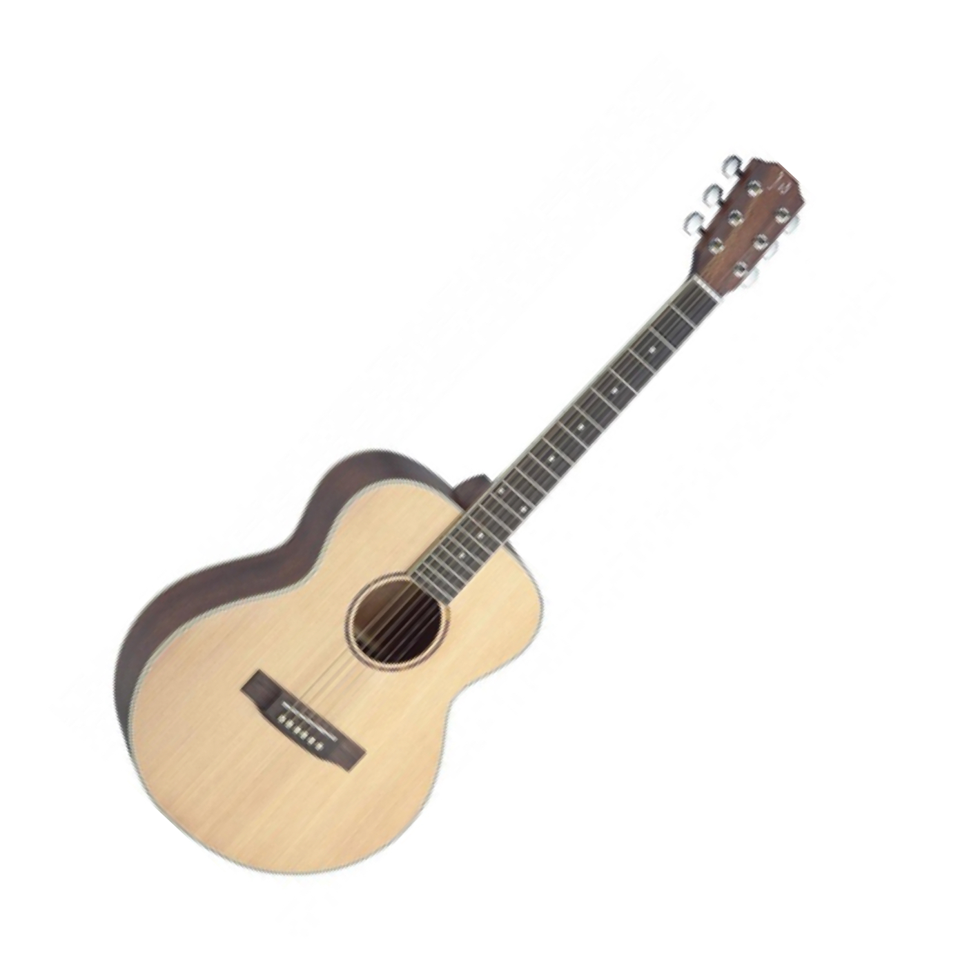 Neligan ASY-A Auditorium Acoustic Spruce