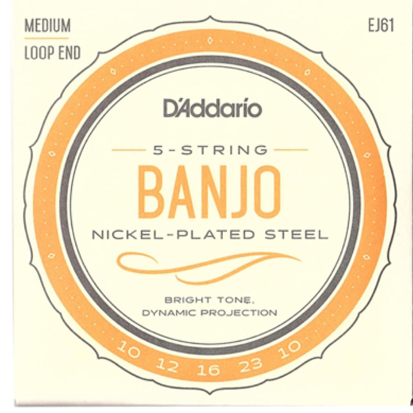D'Addario EJ61 5 String Banjo Set Medium Loop End