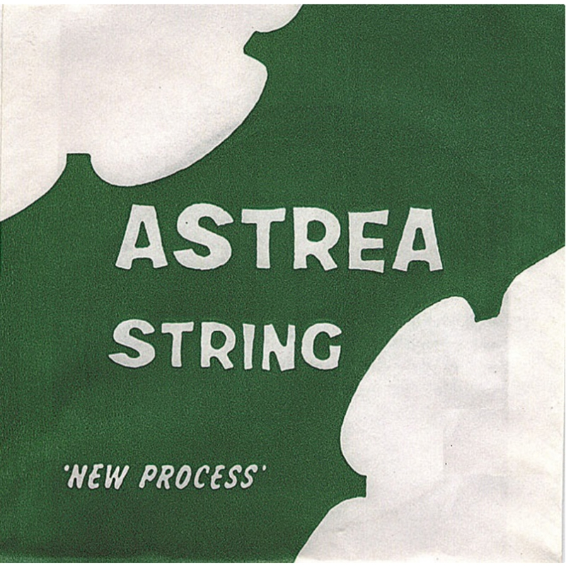 Astrea Violin 4/4 Set