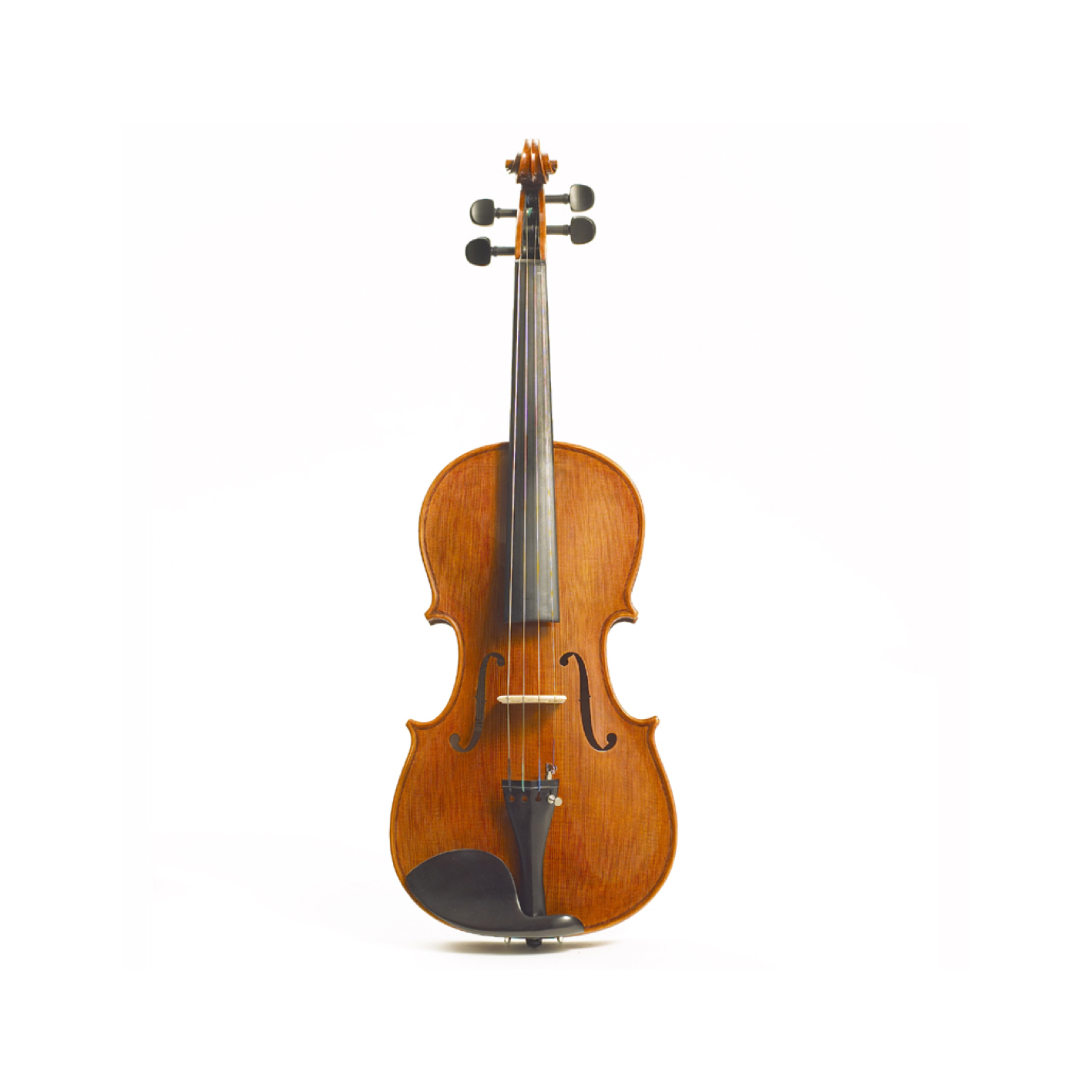 "Stentor Elysia 15.5"" Viola Instrument Only"