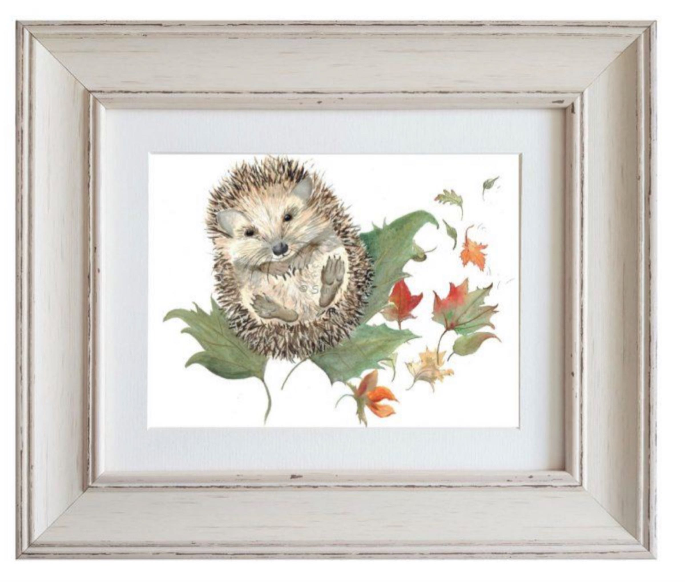 Mr Prickles Hedgehog Framed Print by Sarah Reilly 28cmx33cm