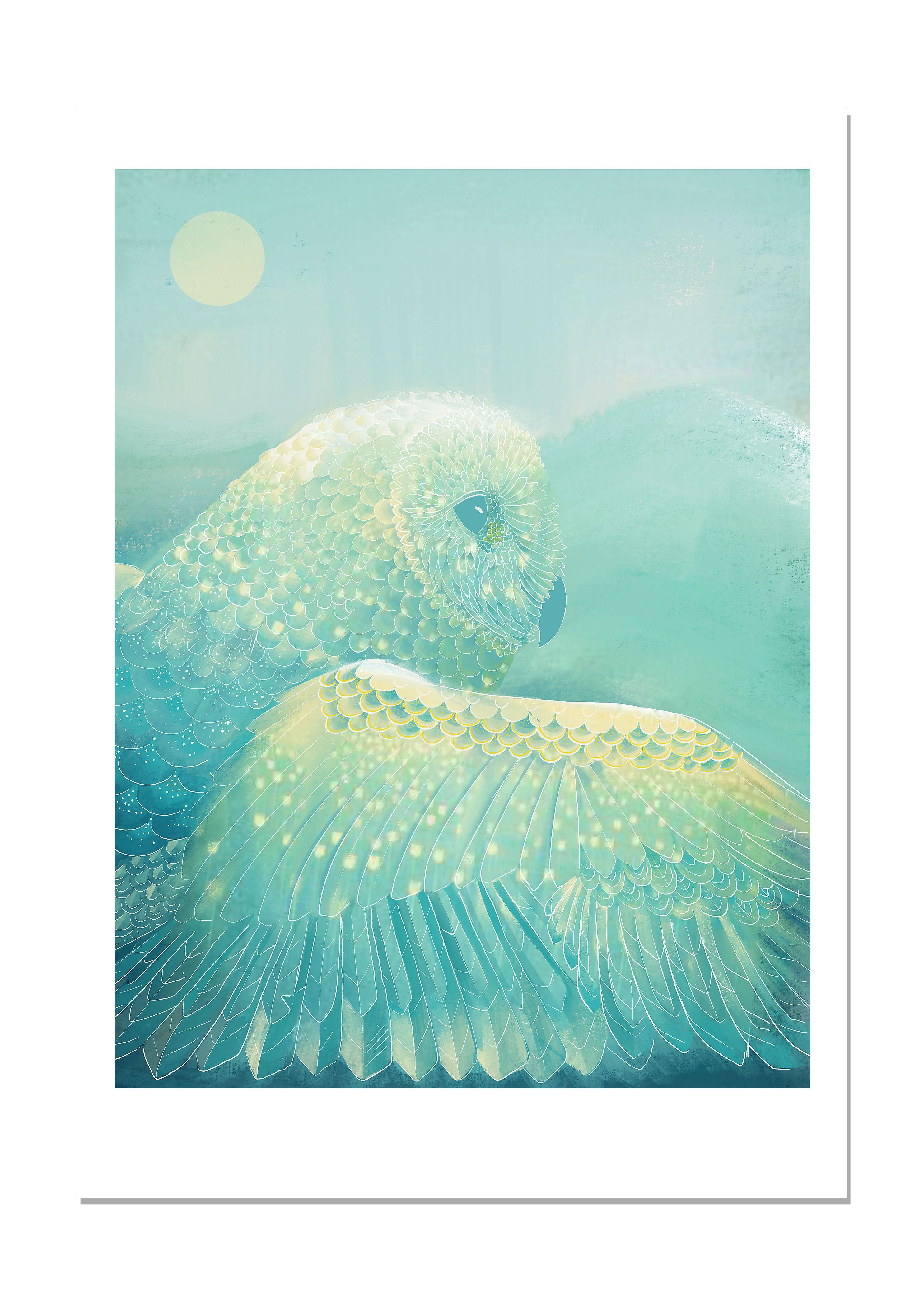 Owl Sky