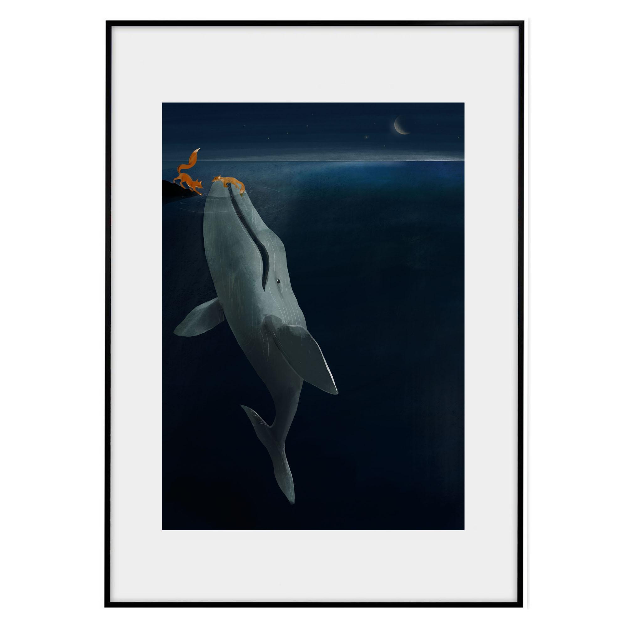 Whale save fox