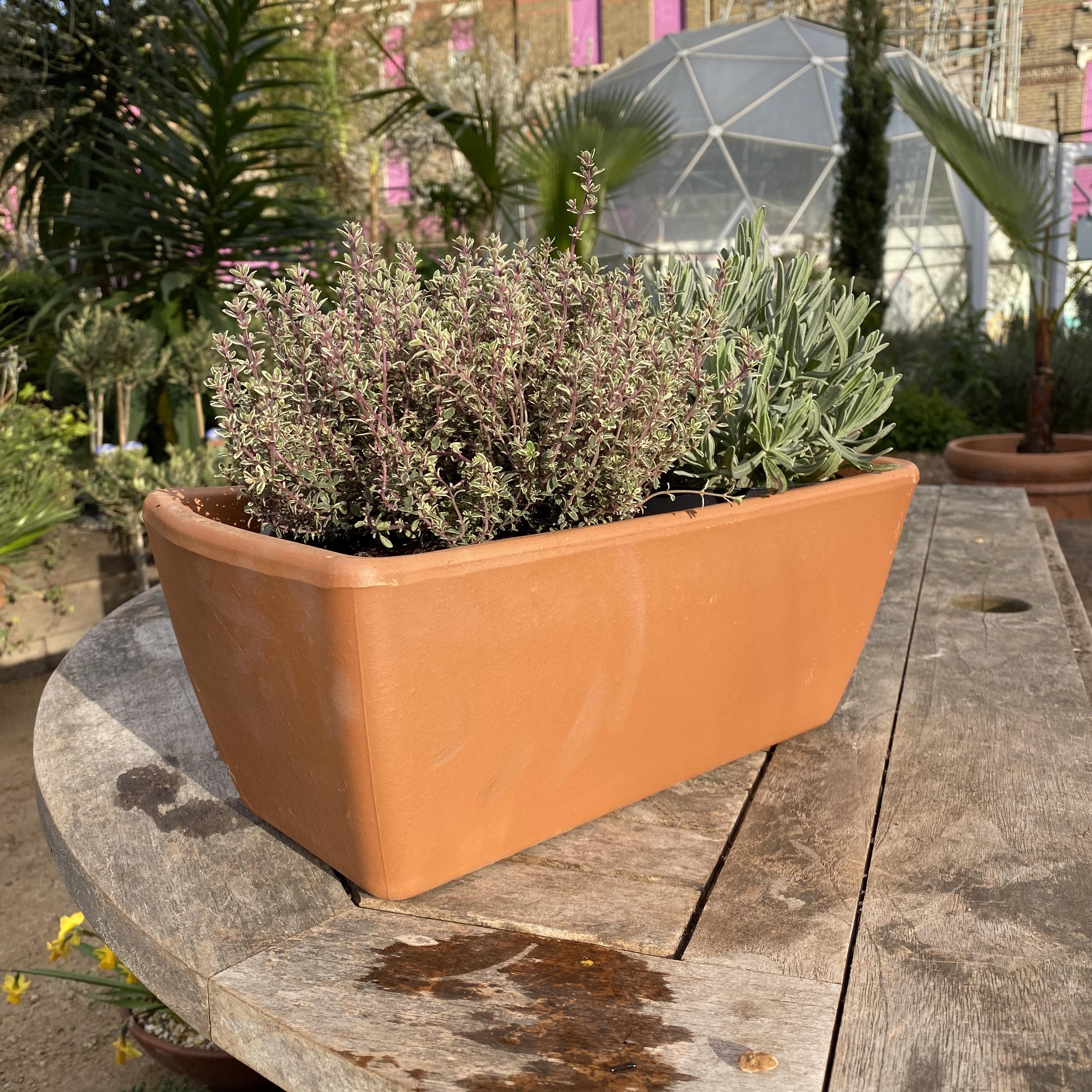 Terracotta Trough - 2 Sizes, 3 Colours
