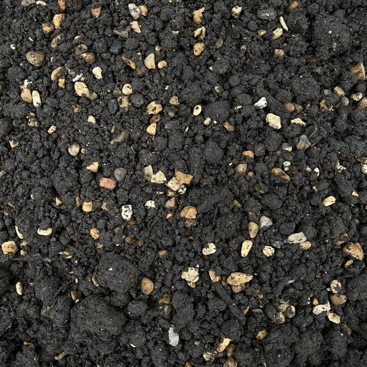 Aquatic Soil