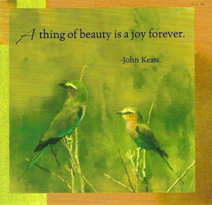 A thing of beauty is a joy forever - Magnet