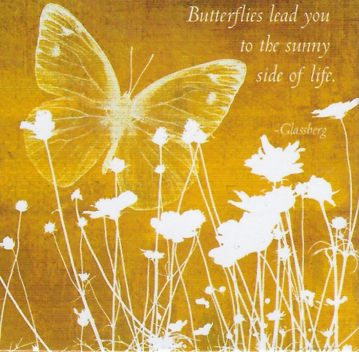 Butterflies lead you to he sunny side of life - Magnet