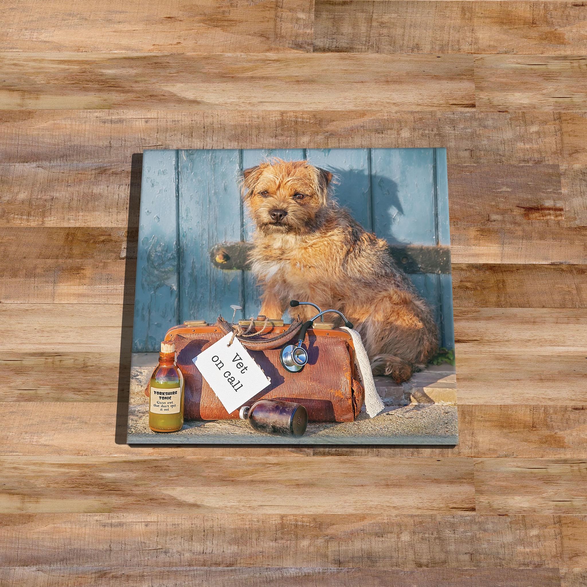 Border Terrier Glass Coaster (Vet On Call) - Kitchy & Co