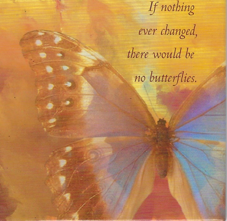 If Nothing Ever Changed, There Would Be No Butterflies - Magnet