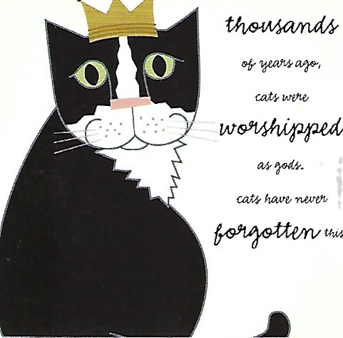 Thousands of years ago cats were worshipped as gods, cats have never forgotten this - magnet