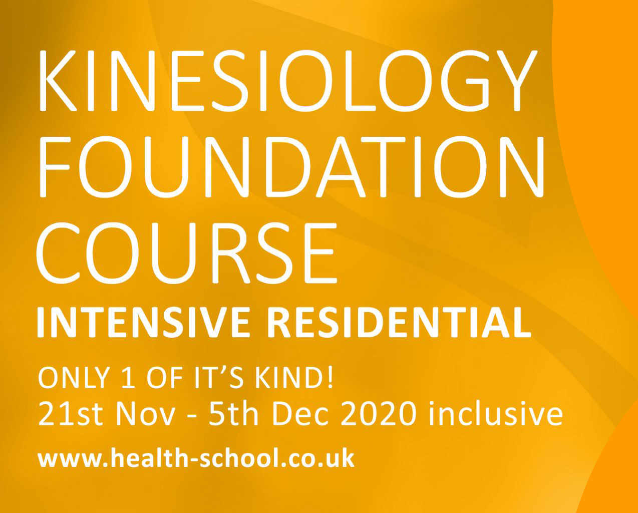 Early Bird Kinesiology Foundation Course – Residential Intensive