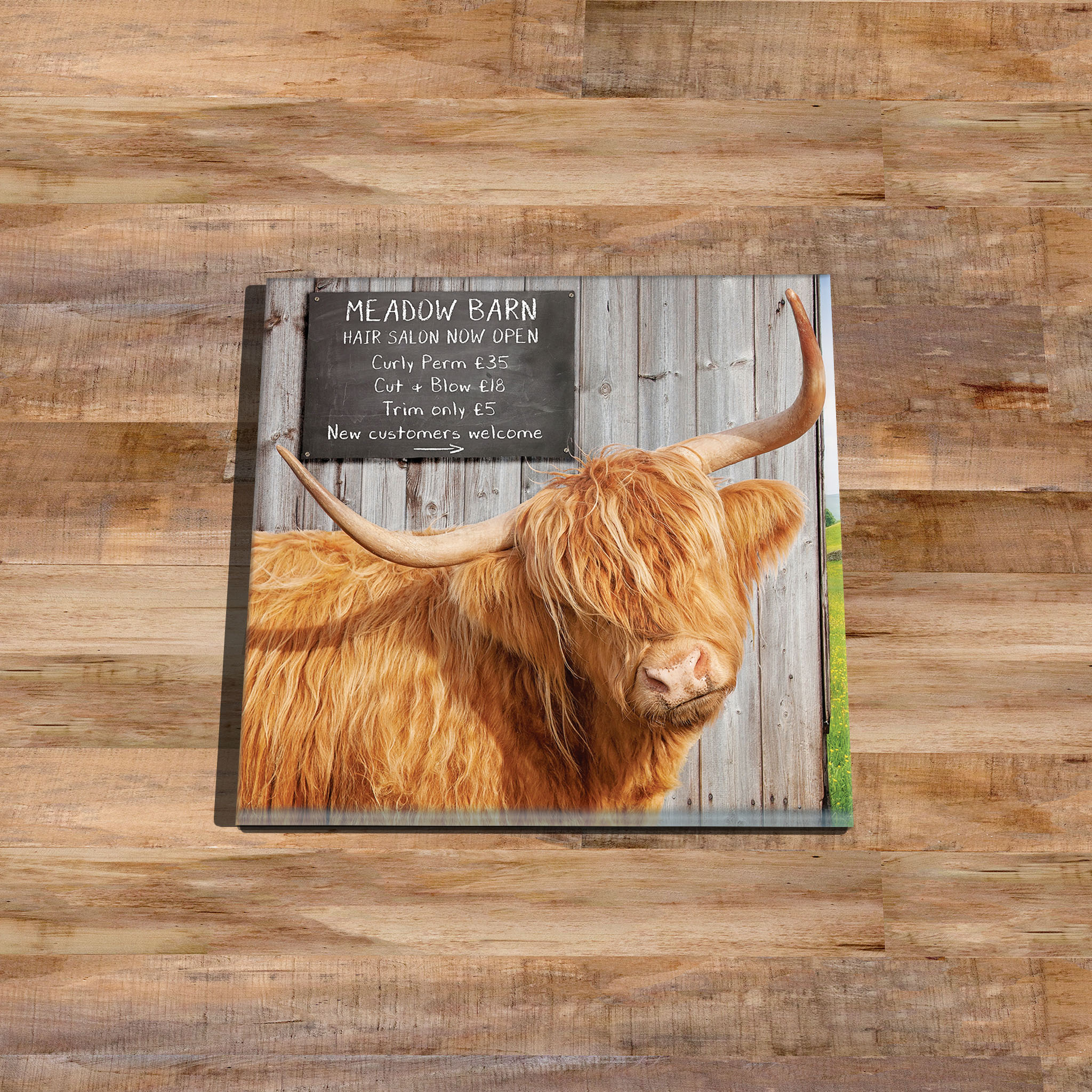 Hettie's Haircut - Higland Coo - Glass Drinks Coaster - Kitchy & Co
