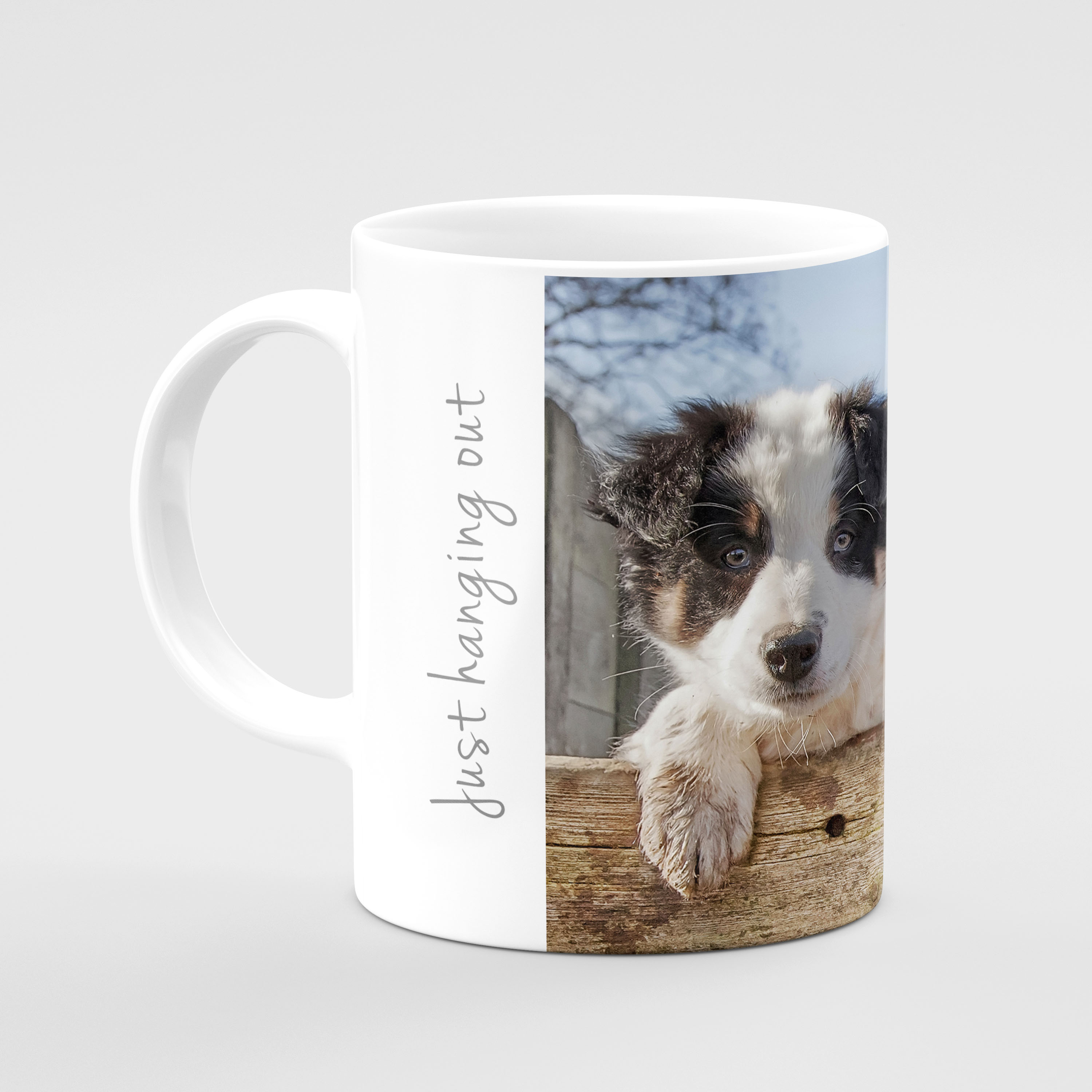 Adorable Border Collie Puppies Glass Drinks Coaster - Kitchy & Co