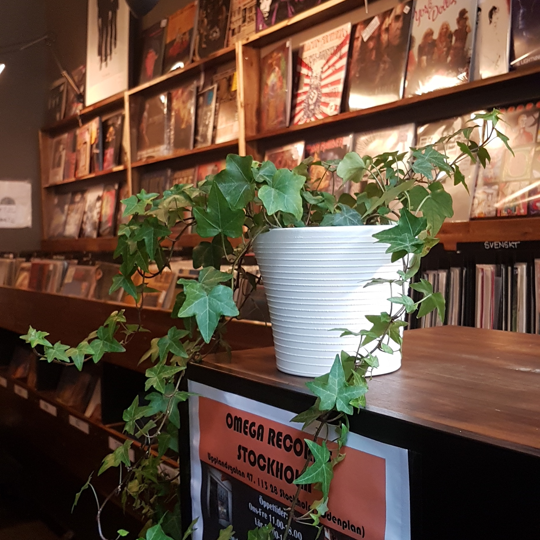 Omega Records Stockholm