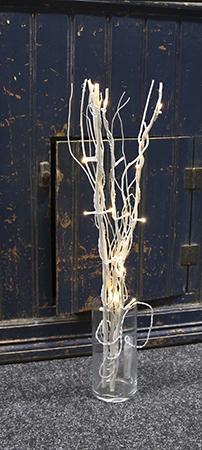 Valo-oksat Willow, natura, paristolla