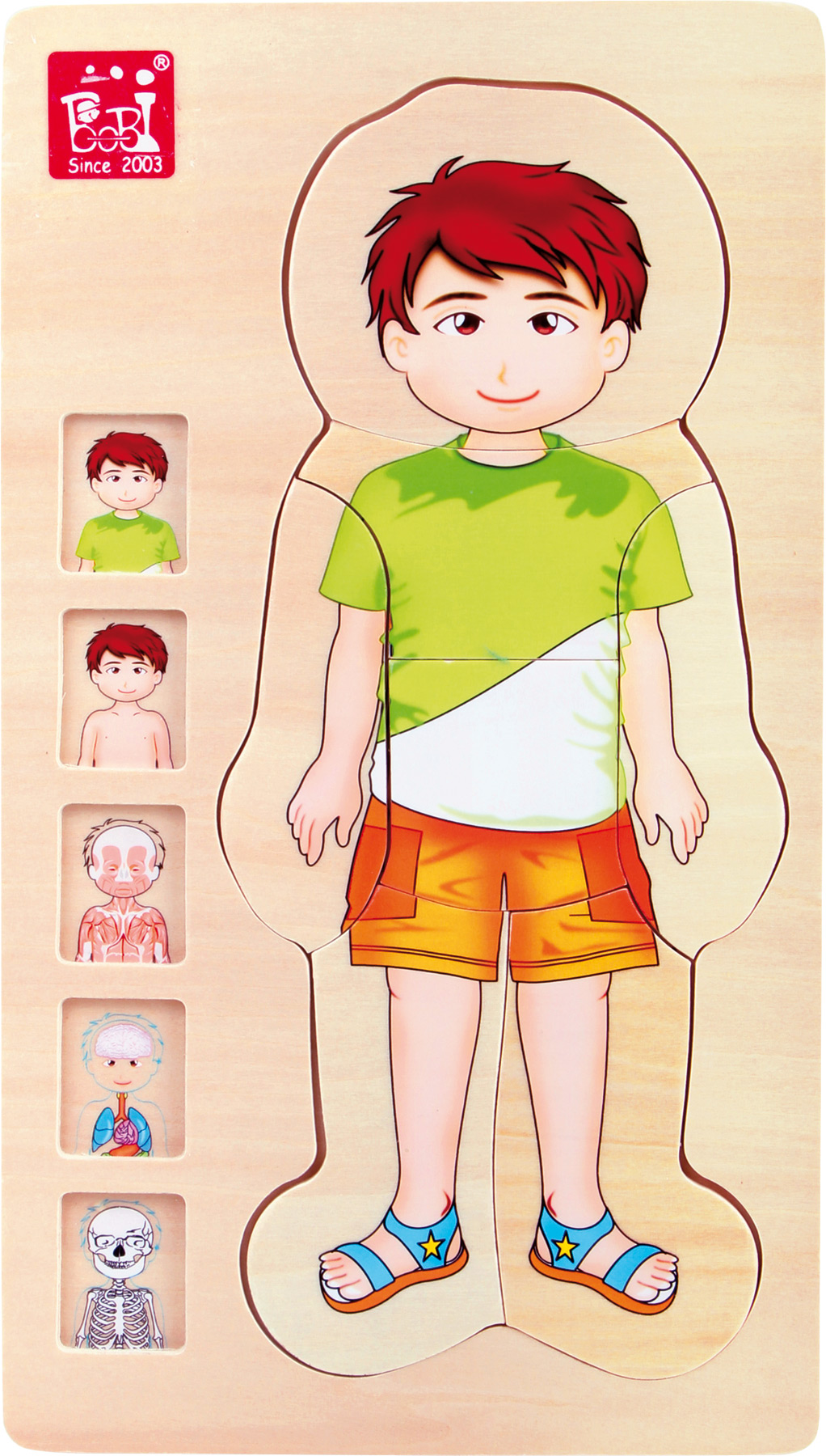 Palapeli Anatomia poika, Legler