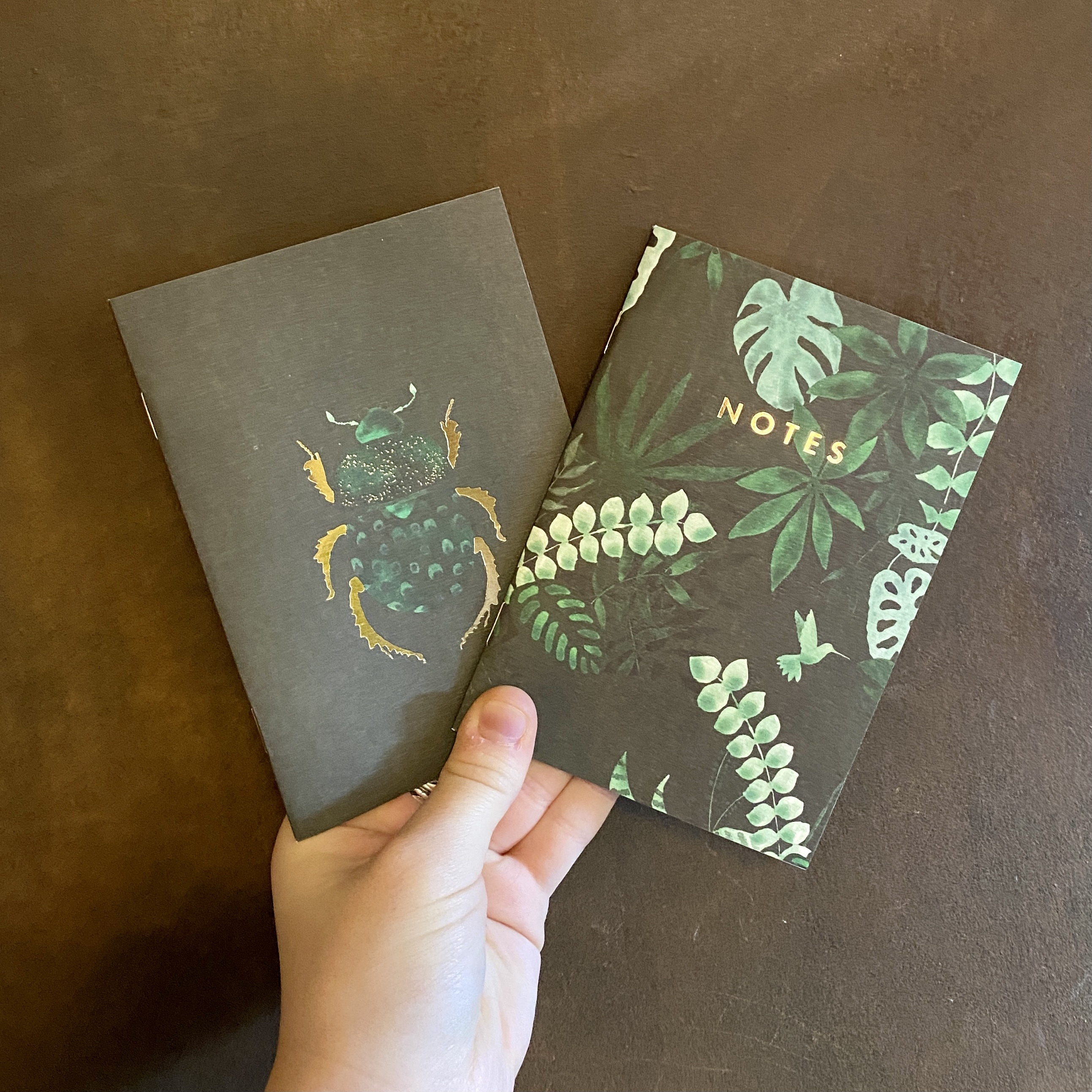 Pocket Notebooks (2 pack)