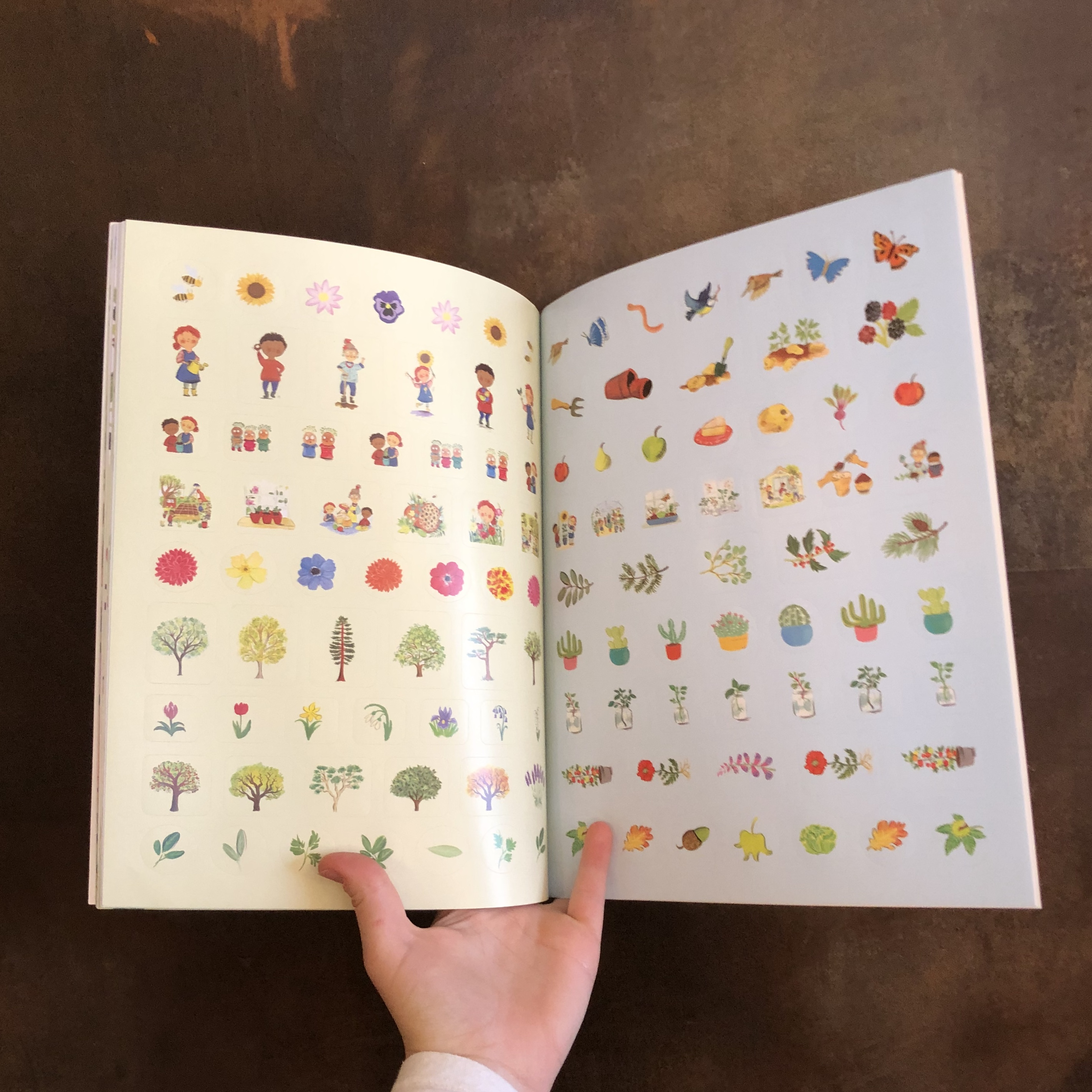 Growing Things (A Sticker & Activity Book)