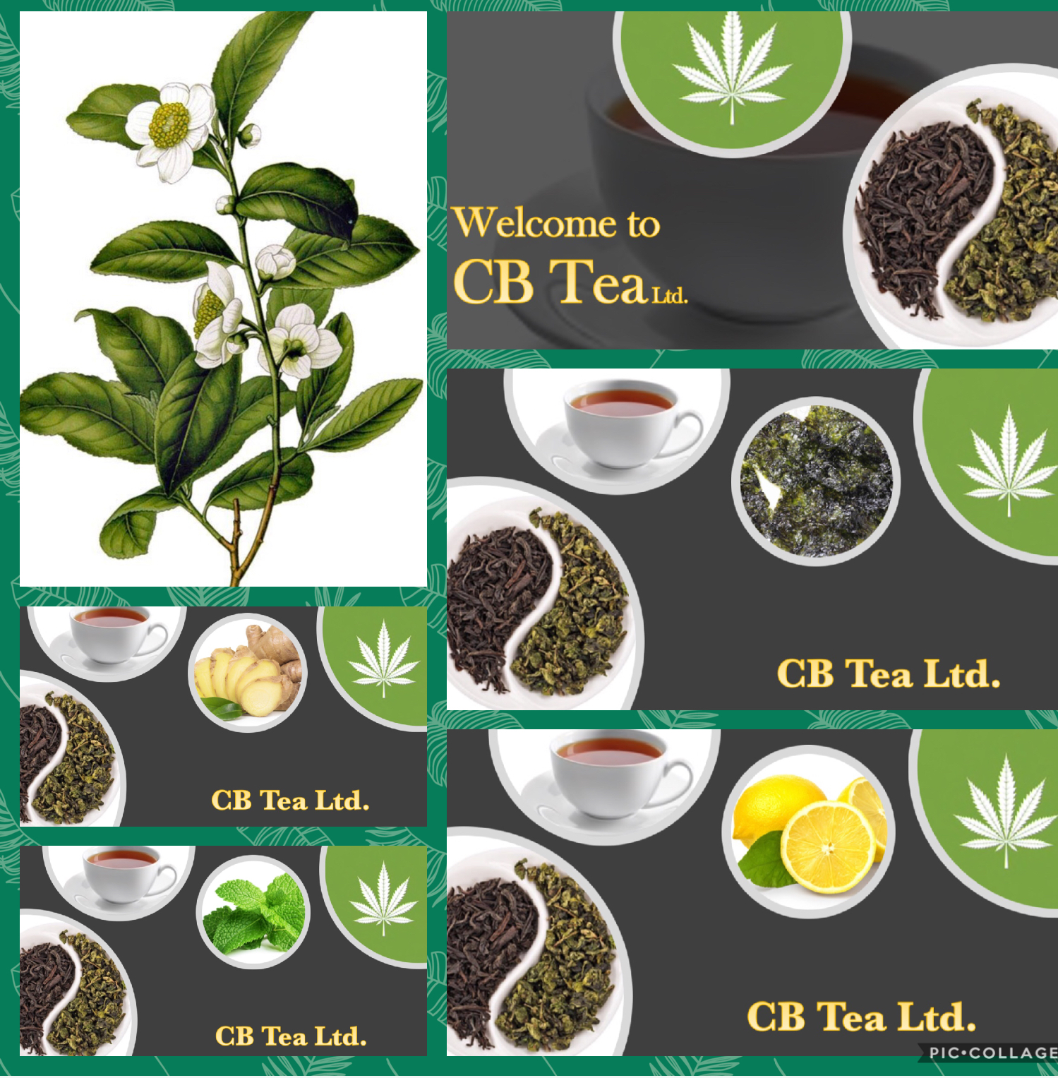 CB TEA LTD.