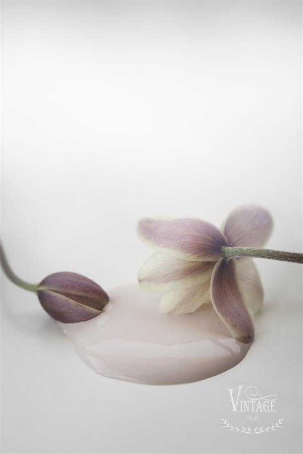 Vintage Paint Antique Rose 700ml