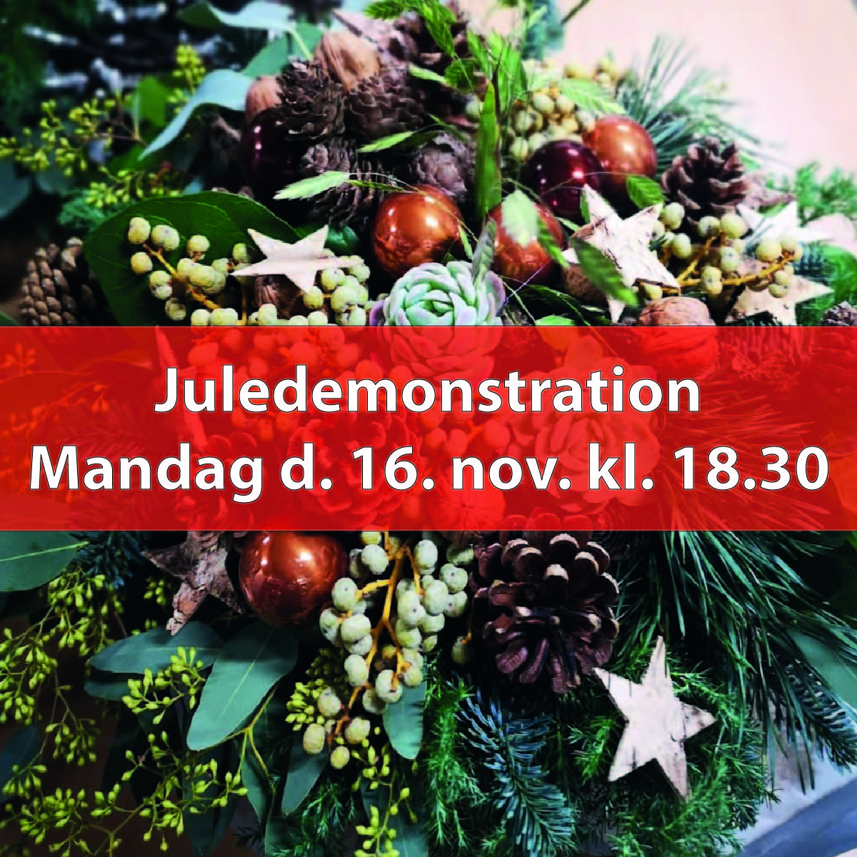 Juledemonstration, Man. d. 16. nov. kl. 18.30