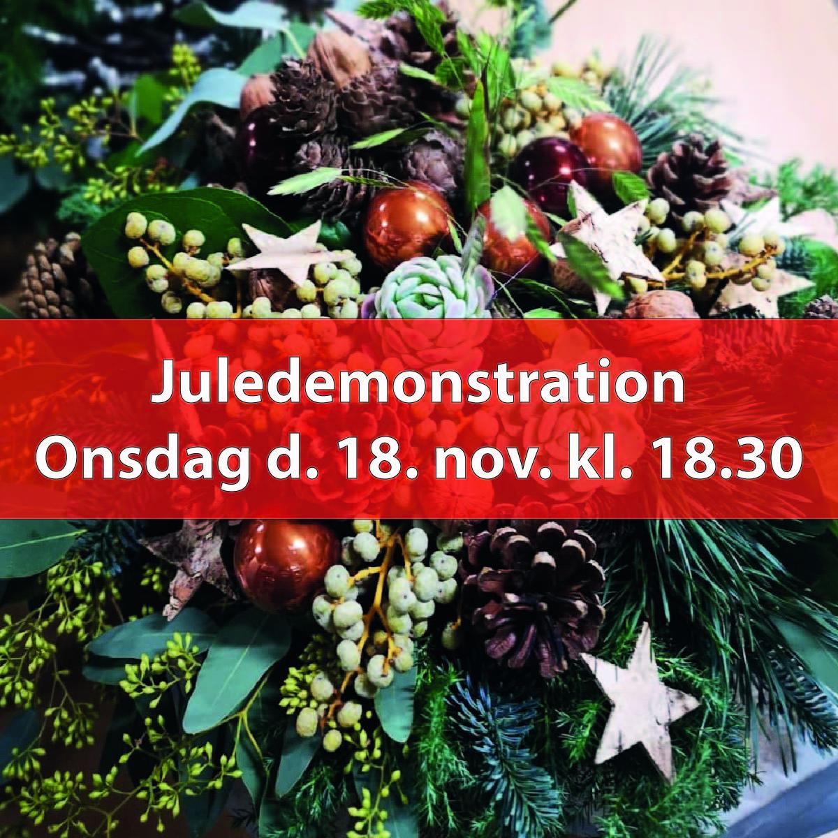 Juledemonstration, Ons. 18. nov. kl. 18.30