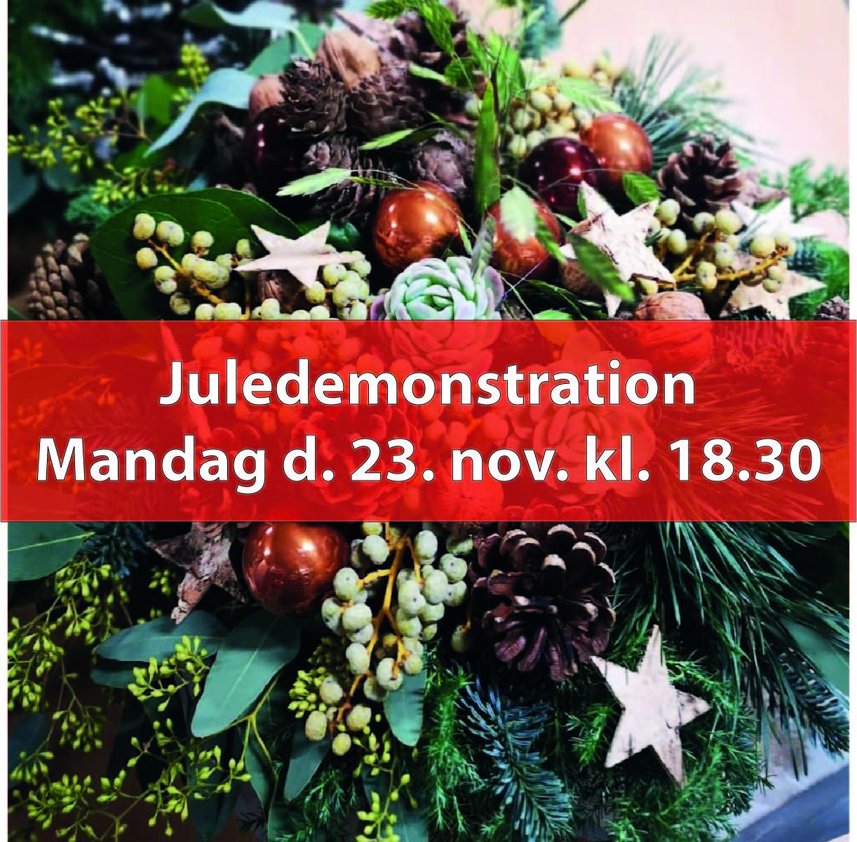 Juledemonstration, Man. den 23. nov. kl. 18.30