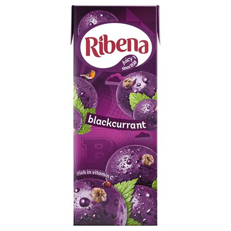 RIBENA BLACKCURRANT (CARTON) 250ML