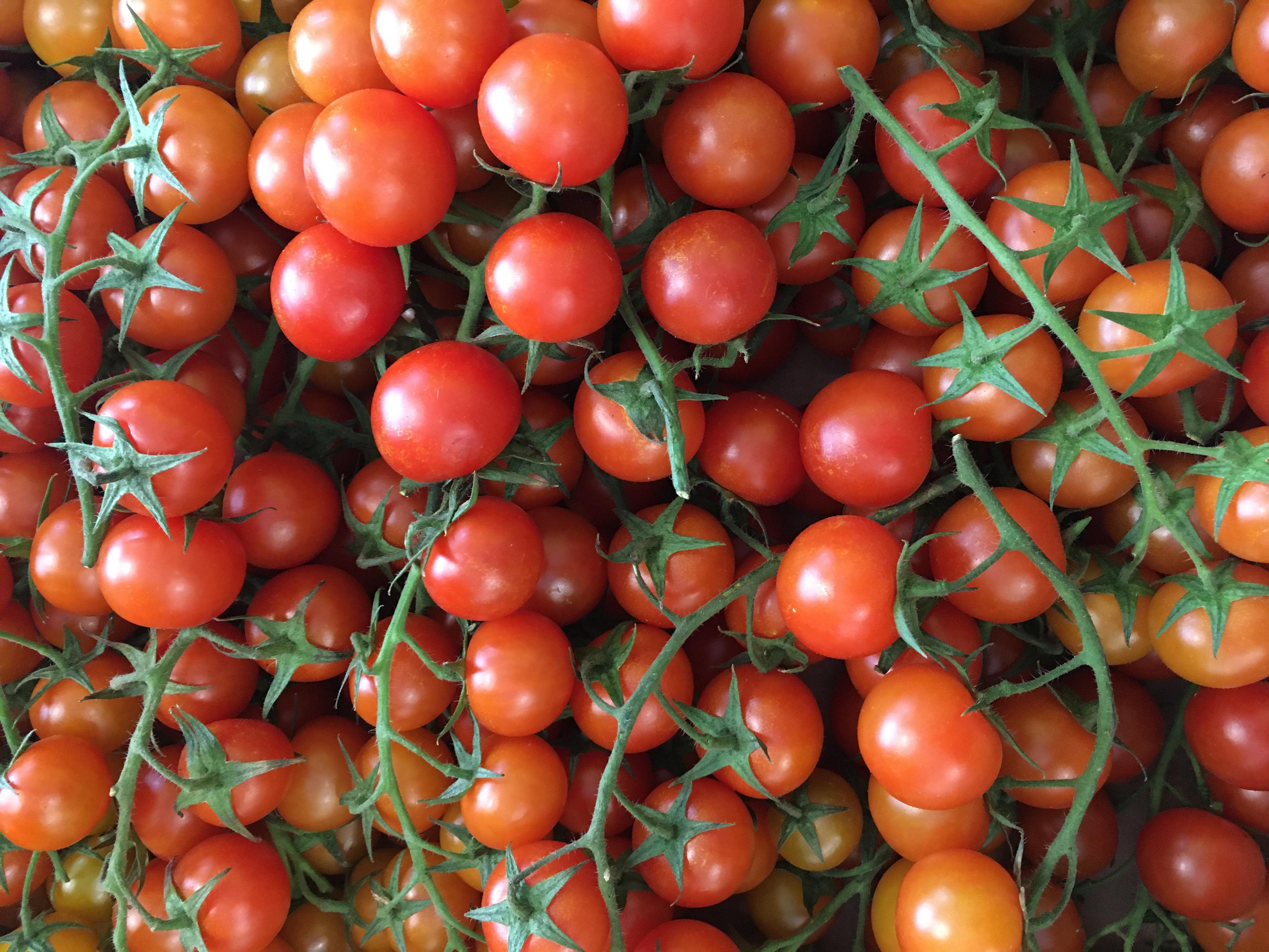 Organic Cherry Vine Tomato