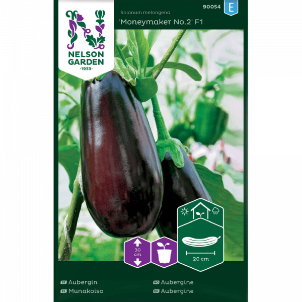 Aubergine Moneymaker Nr 2 F1