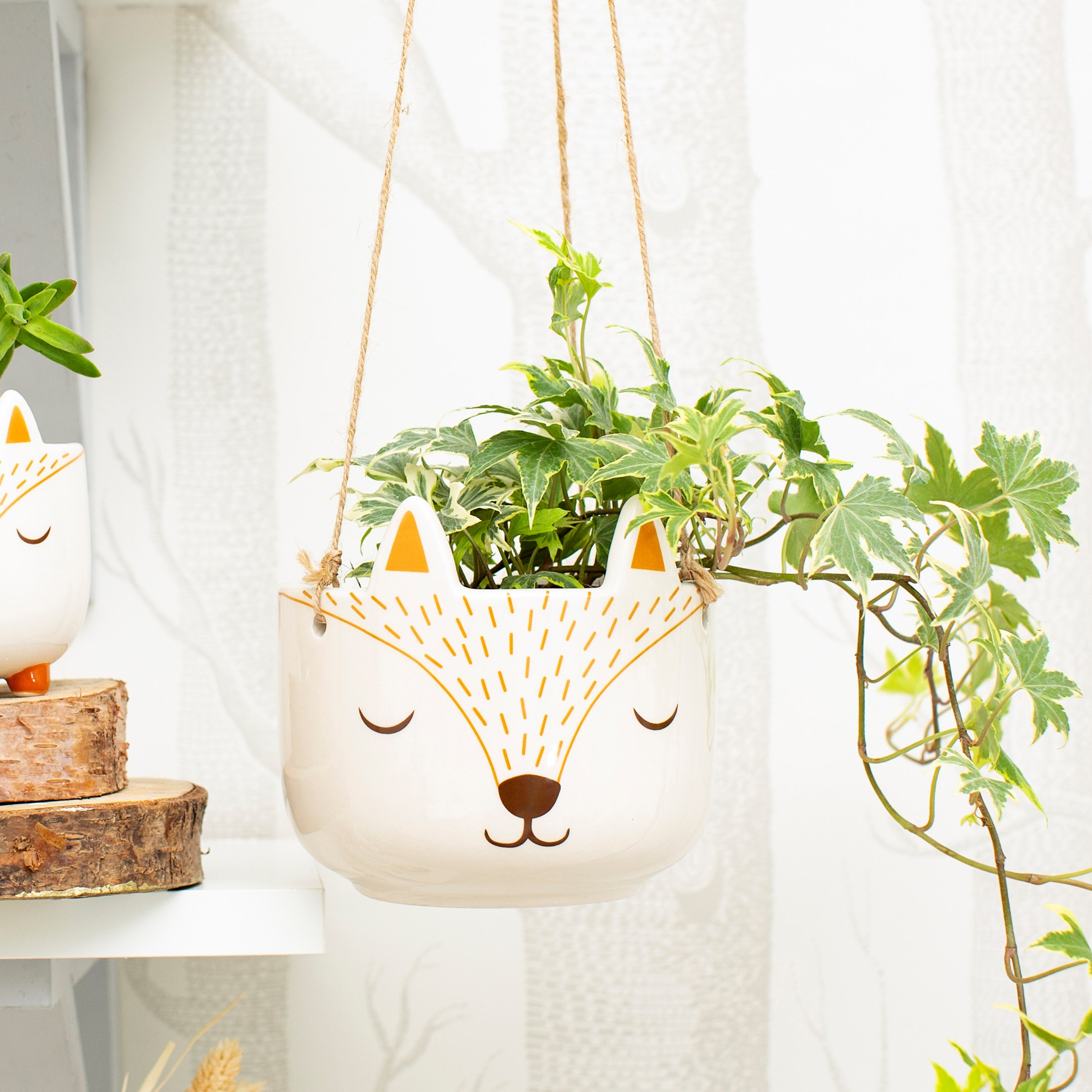 Woodland fox hanging planter. Sass and Belle